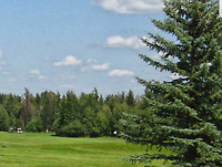 Whitewood Links Golf and RV Park