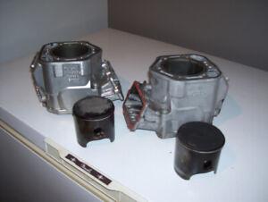 deux cylindres et deux pistons pour bombardier 800 HO
