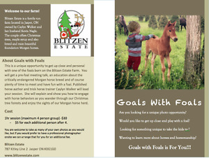 Goals With Foals - Meet the Foals Opportunity!