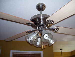 ceiling fan/light combo