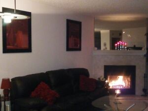 MUST SEE 1 BEDRM CONDO RECENTLY RENOVATED, NEW APPLIANCES