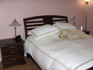 Queen bedroom set with mattress- Excellent condition, must sell!