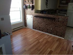 2-bedroom apartment-Downtown Ottawa-Close to park -Price reduced