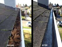 GUTTER CLEANING/DUMPING/FALL CLEANUP $45