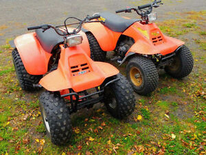 83 & 84 Suzuki 125 Quadrunners(With Papers*)