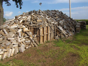 Good quality firewood