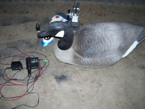 remote control boat and goose