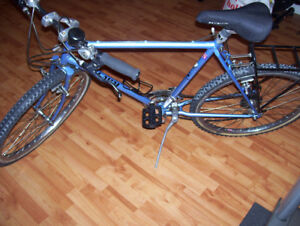 Landmaster Vintage Japanese Sakai mountain bike,new condition