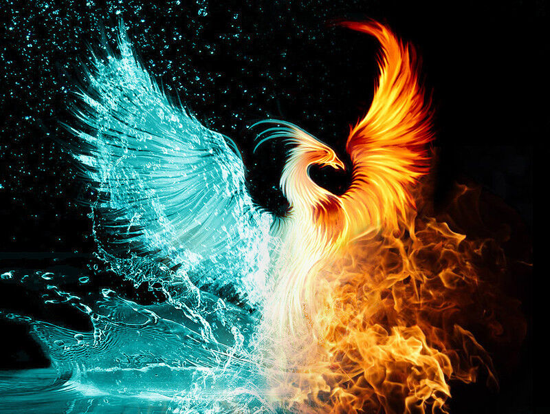phoenixtech16