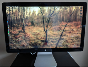 "Apple thunderbolt display 27"". Great condition."