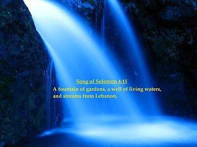 Song Of Soloman (Song of Soloman 4:15 Bible Scripture Art Print 8