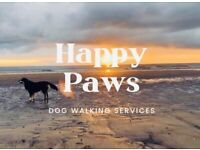 🐶 Dog Walker 🐶 and pet sitting service