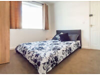 Professional Double Room Available (65FR1)