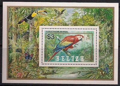 Belize Stamp - Parrots Stamp - NH