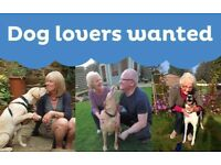 Dog Loving Volunteers Wanted