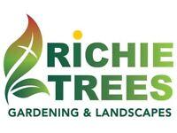Gardening landscaping stump grinding this weekend