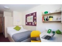 Buchanan view student accommodation room available