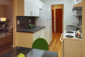 70 Donwood, Bachelor Apartment available June 1