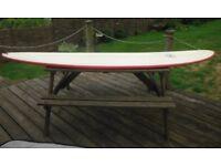 Performance Longboard 9 foot