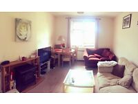 Cheap room for Edinburgh Festival!!!!Available asap-rent per night!
