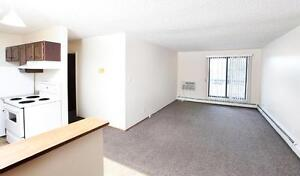 Pet friendly and Beautiful 2 bedroom Apartment  Avilable Now..!