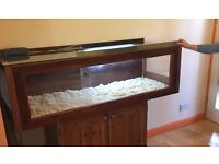 Large 5ft vivarium, solid mahogany frame/glass top, with setup accessories – just add snake!