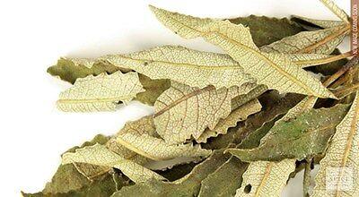 Yerba santa leaf whole  wild crafted  1 oz wiccan pagan witch herbs