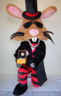 Mascot Costume (Rabbit) Kambah Tuggeranong Preview