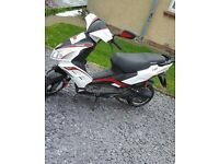 Lexmoto FMR 50cc Moped/Scooter for sale - Excellent condition!