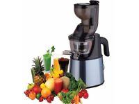 ElectriQ Whole Fruit Slow Masticating Juicer