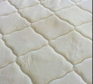 Professional Cleaning Carpet,Couch & Mattress - JnC Services Sarnia Sarnia Area image 6