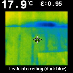 FLIR Thermal Camera Rental- Home Inspection, Leaks, Energy Audit