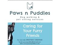 Paws n Puddles Dog walking & pet sitting services in South West London