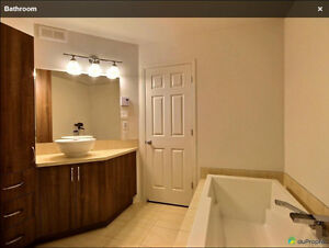 $1280/mth - 1200 sf - 2 bedroom New Condo for Rent (Vaudreuil) West Island Greater Montréal image 7