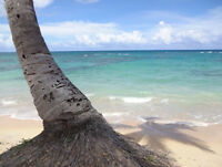 Vacation rentals! Lowest Price Guaranteed!