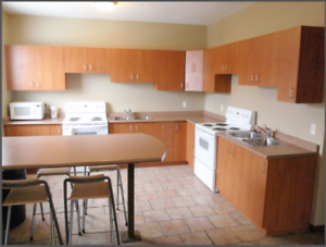 McMaster Student Unit, All-Inclusive, WiFi, Cleaning, Parking