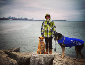 Dixie Dundas Dog Walker - Experienced, dedicated and reviewed.