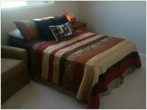Double/Queen Comforter and Two Pillow Shams