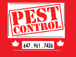 Pest Control -  ✓ Fast ✓ Effective - 647 961 7426