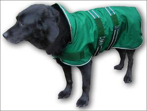 Rainproof-waterproof-Animate-dog-coat