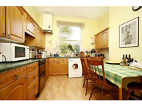 Stunning 4 bedroom house - Ideal for 4 student sharers..