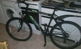 ROCK PYTHON 21 speed mens bike excellent condition. first to see will buy. black and green