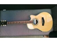 """Anderson """"69"""" Handmade Acoustic Guitar brand new"""