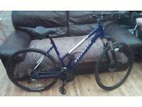 Specialized hybrid bicycle mountain bike