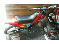 50cc sky team with stabilizers