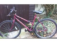 Woman's or Girls Raleigh 15 speed bicycle. Fit female 5ft to 5ft 4