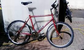 Apolo laser push bike