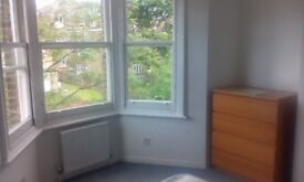 Double room near to Clapham Common. There are 2 people in the flat only