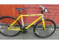 Brand new feral single speed fixey bike