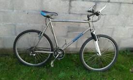 Mountain bicycle giant terrago adult